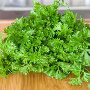 herb_parsley_300