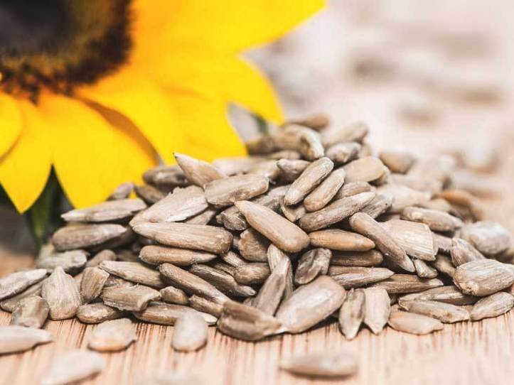 3859-sunflower_seeds-732x549-thumbnail